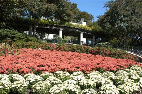 dallas arboretum and botanical garden society chion