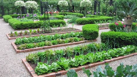 Backyard Vegetable Garden Layout by Vegetable Garden Layout And Ways To Improve Garden Plant