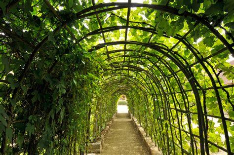 jardin de france jardin de bois richeux parcs et jardins en r 233 gion centre