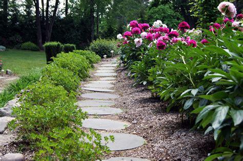 garden designs with peonies pdf