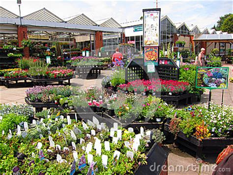 Home Depot Design Center Nyc Garden Center Editorial Photo Image 43732056