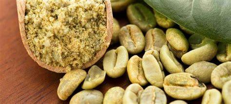 Pelangsing Kopi Hijau manfaat pelangsing alami kopi hijau green coffee
