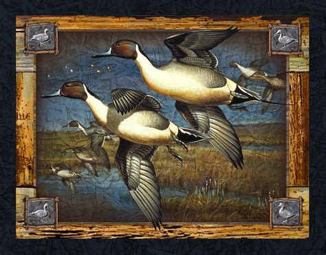 Home Design And Decor App Deco Pintail Ducks Painting By Jq Licensing