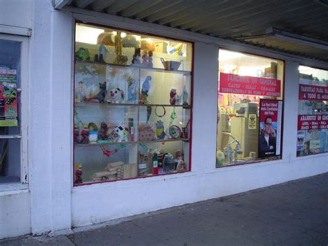 store windows image gallery storewindow