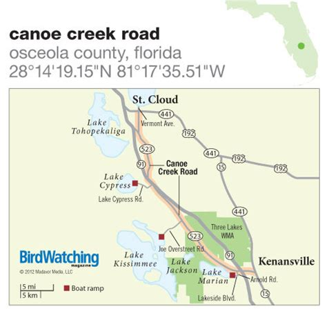 route through florida cattle country you will see miles of cattle 150 canoe creek road osceola county florida birdwatching