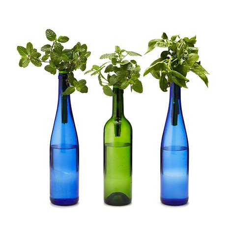 hydroponic herb garden kit bottle stopper hydroponic herb garden kit the green
