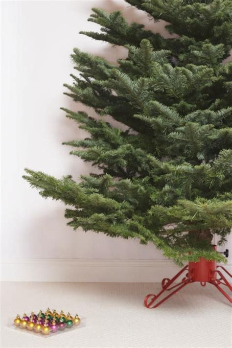 add to xmas tree water 58 best images about hanukah winter diy ideas on trees