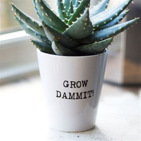 personalised typewritten plant pot witty inspirational
