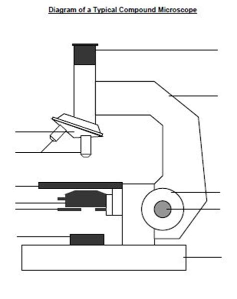 Scientific Microscope Diagram