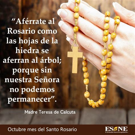 imagenes octubre mes del rosario 11 best frases y oraciones images on pinterest catholic
