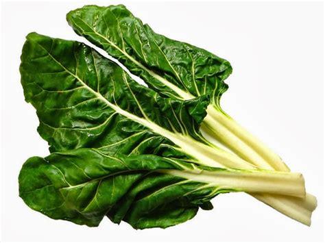 imagenes de hojas verdes comestibles plantas medicinales acelga y sus beneficios
