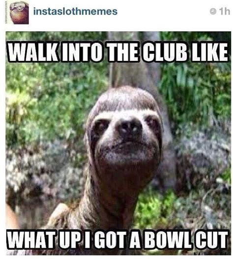 Bowl Cut Meme - bowl cut made me lol pinterest bowls and bowl cut