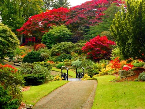 picture of garden lush greenery pictures beautiful gardens wonderwordz