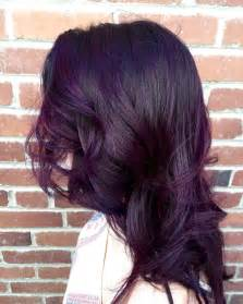 black with purple colour in their hair 25 best ideas about dark purple hair on pinterest plum