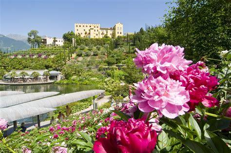 giardini in fiore un risveglio anticipa la pasqua ai giardini dell