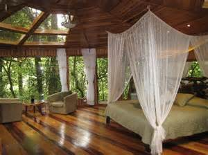Hidden Canopy Treehouses by Humming Bird Picture Of Hidden Canopy Treehouses