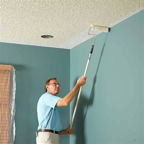 How To Paint A Ceiling With A Roller by 25 Best Ideas About Textured Paint Rollers On