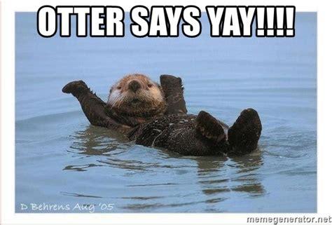 yay meme otter says yay yay otter meme generator