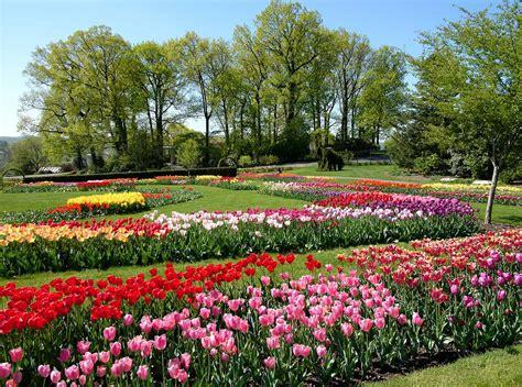 images of gardens bulbs ahoy garden housecalls