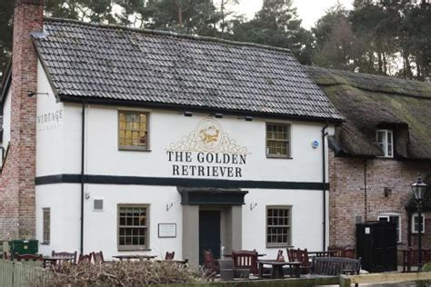 golden retriever crowthorne enjoyable meal the golden retriever bracknell traveller reviews tripadvisor