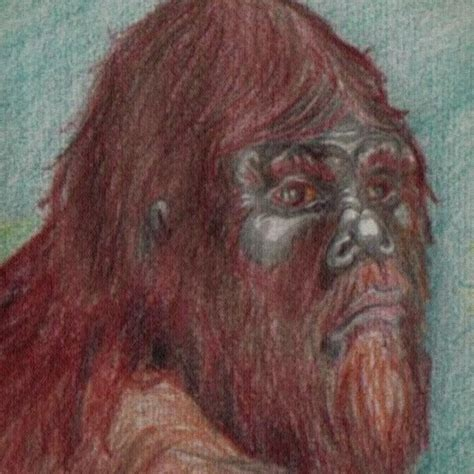 Potpourri bigfoot faces bigfoot411