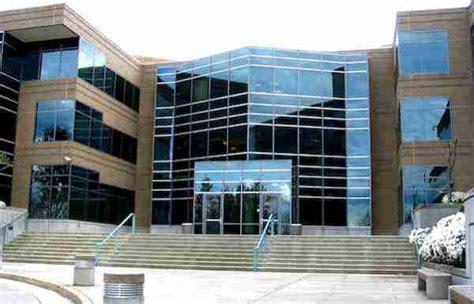 Microsoft S Search Study Analysis Microsoft Corporation S Organizational Structure Its Characteristics An Analysis