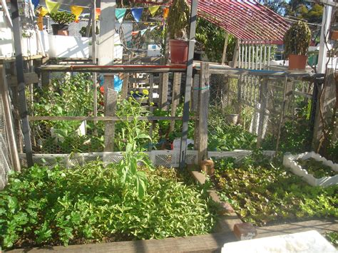 self sufficient vegetable garden ii community gardens sustainable self