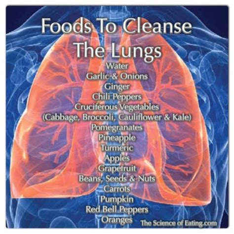 Respiratory Detox by Foods That Cleanse The Lungs