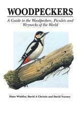 top 100 birding sites of the world ebook birds id insights identifying the more difficult birds