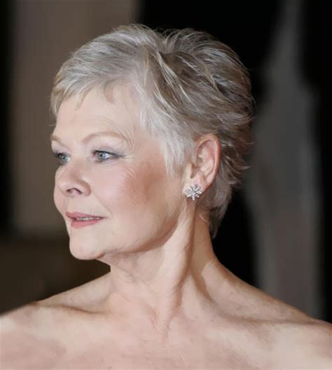 how to style the judi dench haircut 529 best images about judi dench on pinterest actresses