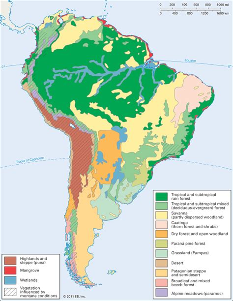 vegetation map of america south america vegetation zones students britannica