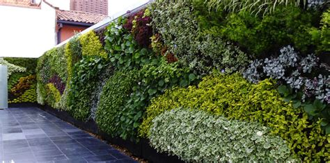 garden wall panels wall plants and vertical garden panel