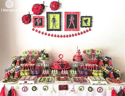 "Ladybugs / Birthday ""Miraculous Ladybug birthday party""   Catch My Party"