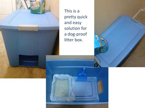 keeping litter box in bedroom hometalk easy and quick solution for dog proof litter box