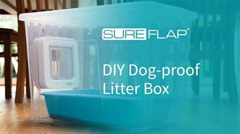 proof litter box diy proof litter box from sureflap