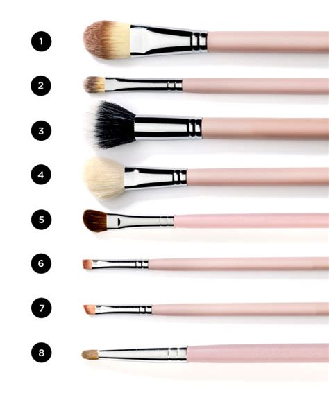 8 Must Makeup Secrets by 8 Must Makeup Brushes For All Makeup Kits