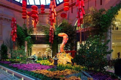 Celebrate Chinese New Year At Bellagio S Conservatory New Years Botanical Gardens
