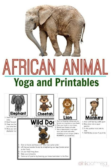 printable animal yoga cards 41 best images about ecosystems on pinterest science