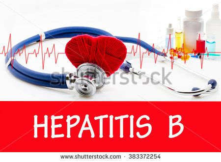 hbv bank virion stock images royalty free images vectors