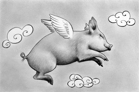 Ignatius the Flying Pig by IleanaHunter on DeviantArt Flying Pig Drawing