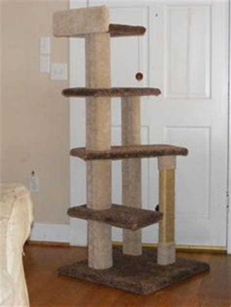 Cat Furniture Plans by Free Cat Furniture Plans Pdf Free Wall Bed