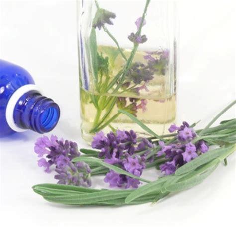 Minyak Bunga Lavender 25ml Murni cara menghilangkan bekas jerawat dengan minyak lavender