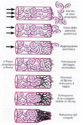test coagulazione emostasi e test della coagulazione pills times