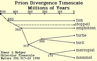 the simplicity of periodicity ambivalent sequence predictor asp v1 0 et al