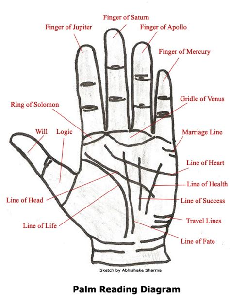 palm reading diagram j s psychic astrology zone palm reading