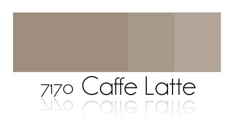 latte color inspiration permanent make up