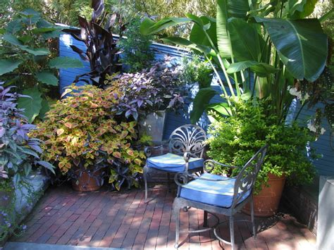 Tropical Patio Decor by Tropical Garden Design Tropical Patio Other Metro