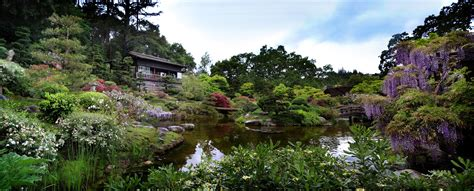 Hakone Japanese Garden by Easter At Hakone Japanese Garden Tea With Md Your