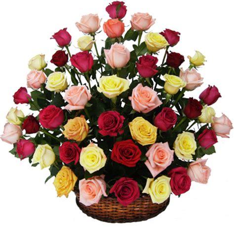 imagenes de rosas varios colores ramos rosas del chic 243