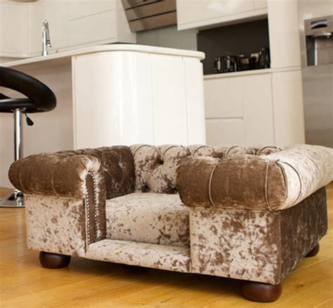 dog settee bed balmoral crushed velvet dog sofa chesterfield dog sofa